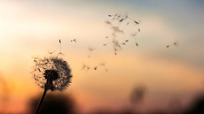 LOSLASSEN – Freude auf dasNeue